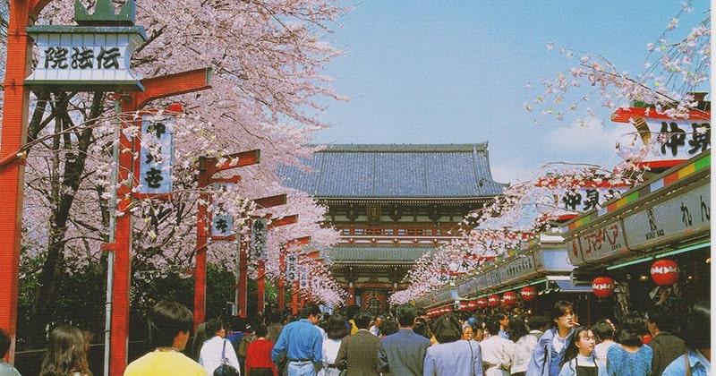 Tham quan ngôi chùa cổ nhất Tokyo – chùa Asakusa Kannon
