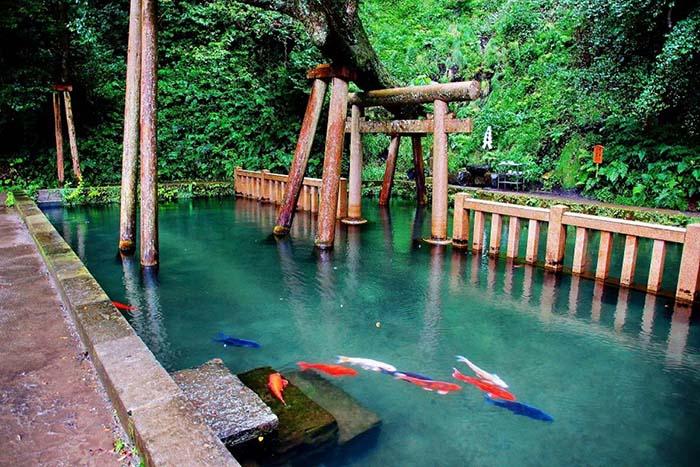 Hồ Mitarashi của đền Kashima Jingu