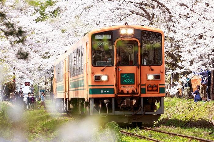 Kinh nghiệm sử dụng phương tiện công cộng ở Nhật Bản